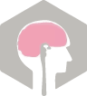 האיגוד הישראלי לנוירוכירורגיה